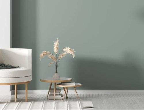 Матовая краска в интерьере современного дома: насыщенный цвет, долговечность и экологичность
